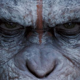 Matt Reeves Shares First Set Picture Of Next Apes Film